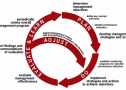 Approaches_Adaptive-mgmt-cycle