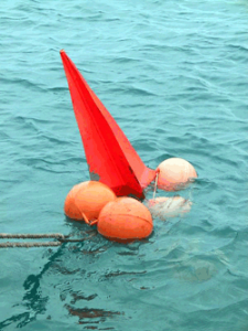 Mooring buoys are one management strategy to address recreational impacts. Photo © James Oliver