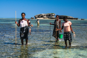 Smaller families enable women to contribute to the household income and reduces the pressure on the natural resources. Vezo women octopus gleaning. ©Ida Vincent