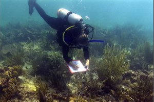 Meaghan Johnson of The Nature Conservancy performs reef surveys as part of the FRRP-DRM. © Erich Bartels