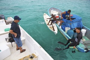 Fishermen, the government, academia, and NGOs in Belize are working together to implement a system for fishing called Managed Access, which combines territorial user-rights for fishing (TURFs) and no-take replenishment zones. Photo © Jason Houston/Rare