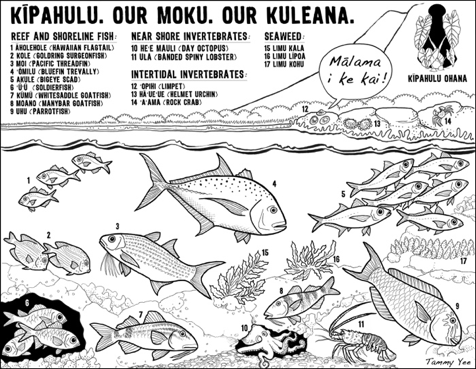 Coloring activity designed by Kīpahulu Ohana, a community group raising awareness about marine resources and working to return abundance to East Maui Hawaii.
